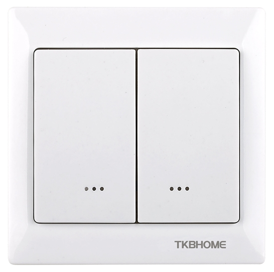Picture of Double Paddle Wall Dimmer TZ55 - Z-Wave Plus