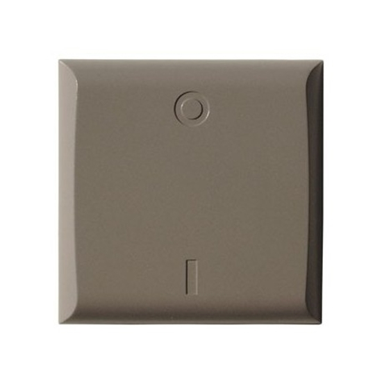 Picture of Gray Simple Paddle