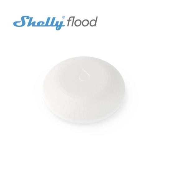 Picture of Shelly Flood